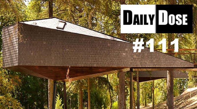 دوز روزانه معماری شماره ۱۱۱: خانه مار درختی